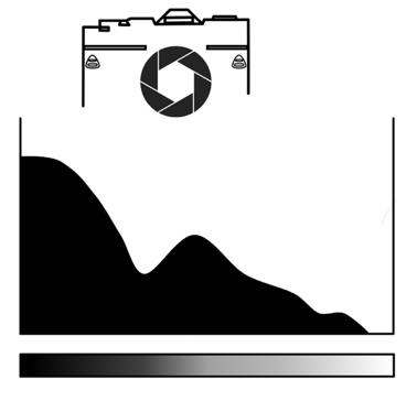 L'histogramme en photo : Le lire et l'utiliser pour améliorer ses photographies 6