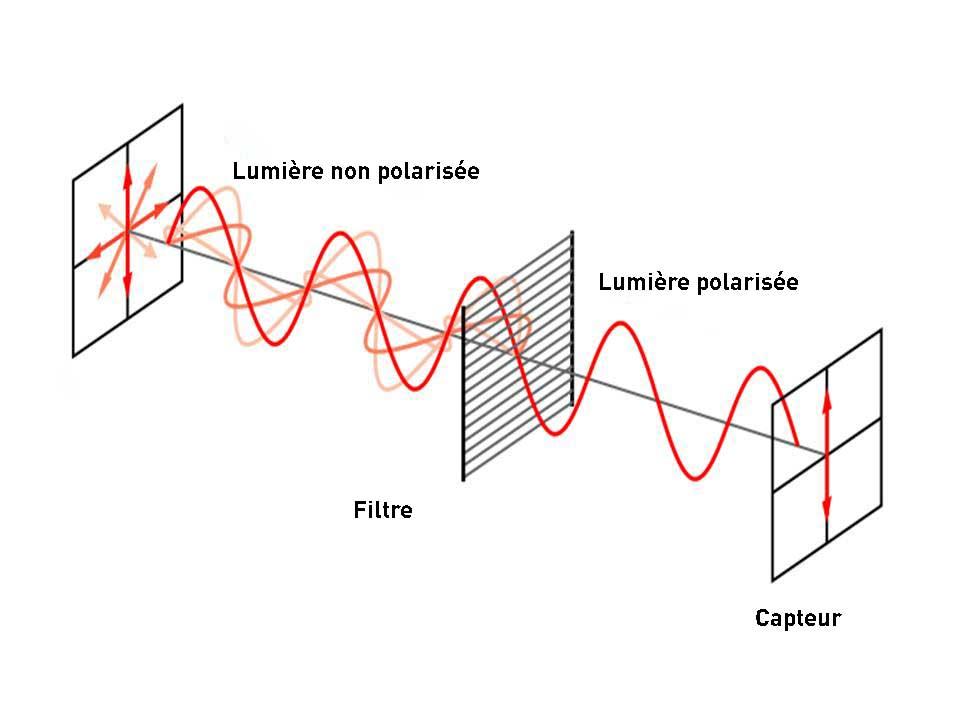 Filtres-polarisants